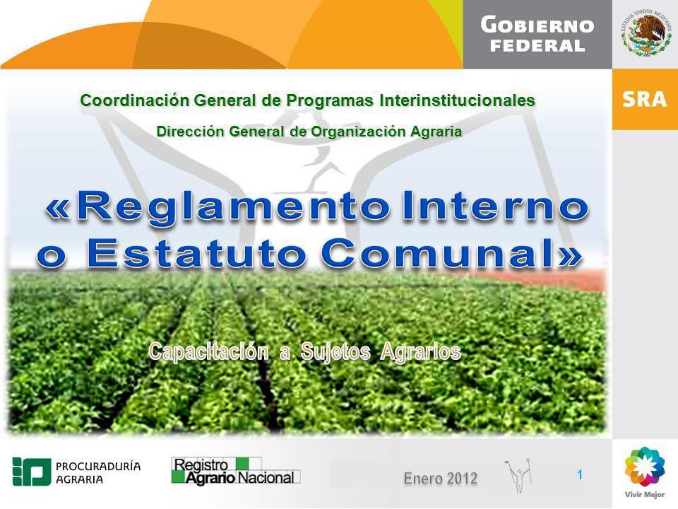 DIRECCIÓN DE ORGANIZACIÓN AGRARIA CAPACITACIÓN A SUJETOS AGRARIOS Reglamento Interno Estatuto Comunal A través de las reglas que sean aprobadas por la Asamblea y se establezcan por escrito en el Reglamento Interno ó Estatuto Comunal.