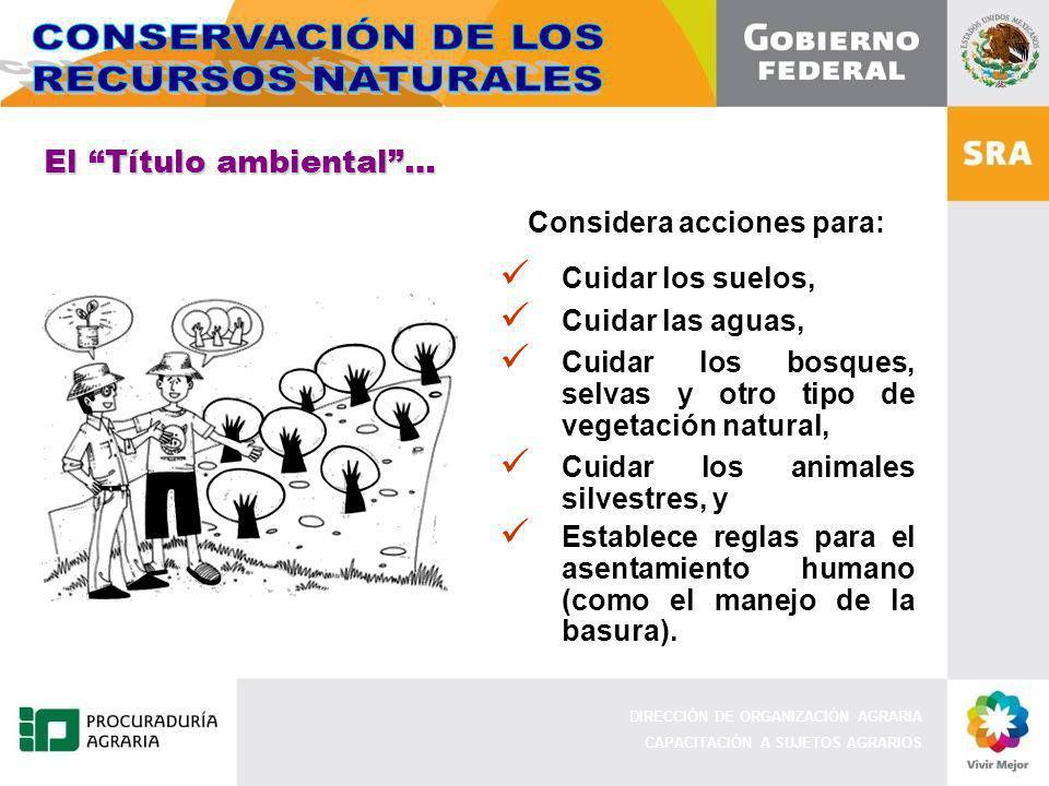 DIRECCIÓN DE ORGANIZACIÓN AGRARIA CAPACITACIÓN A SUJETOS AGRARIOS Considera acciones para: Cuidar los suelos, Cuidar las aguas, Cuidar los bosques, se