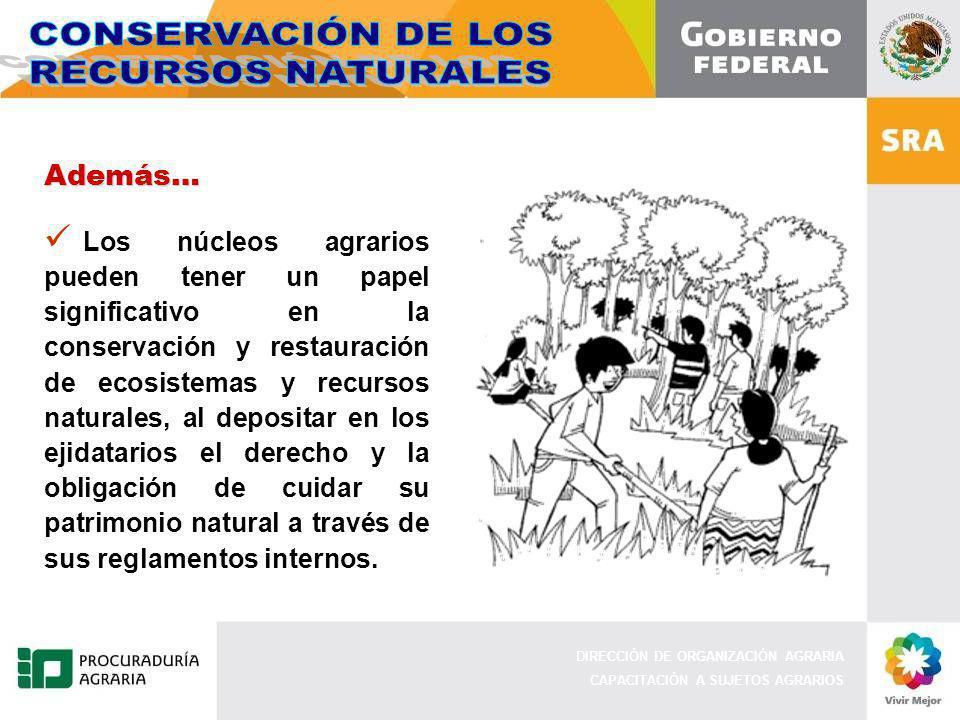 DIRECCIÓN DE ORGANIZACIÓN AGRARIA CAPACITACIÓN A SUJETOS AGRARIOS Además… Los núcleos agrarios pueden tener un papel significativo en la conservación