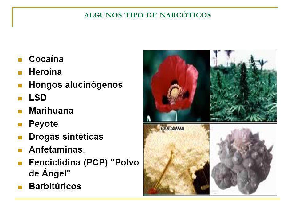 ALGUNOS TIPO DE NARCÓTICOS Cocaína Heroína Hongos alucinógenos LSD Marihuana Peyote Drogas sintéticas Anfetaminas. Fenciclidina (PCP)