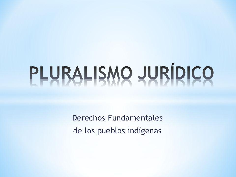 Derechos Fundamentales de los pueblos indígenas