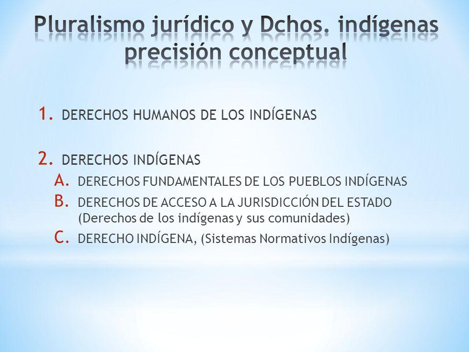 1. DERECHOS HUMANOS DE LOS INDÍGENAS 2. DERECHOS INDÍGENAS A. DERECHOS FUNDAMENTALES DE LOS PUEBLOS INDÍGENAS B. DERECHOS DE ACCESO A LA JURISDICCIÓN