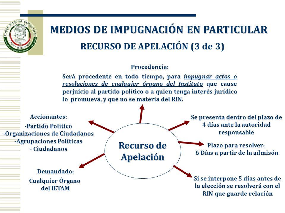 Recurso de Apelación Accionantes: -Partido Político -Organizaciones de Ciudadanos -Agrupaciones Políticas - Ciudadanos Se presenta dentro del plazo de