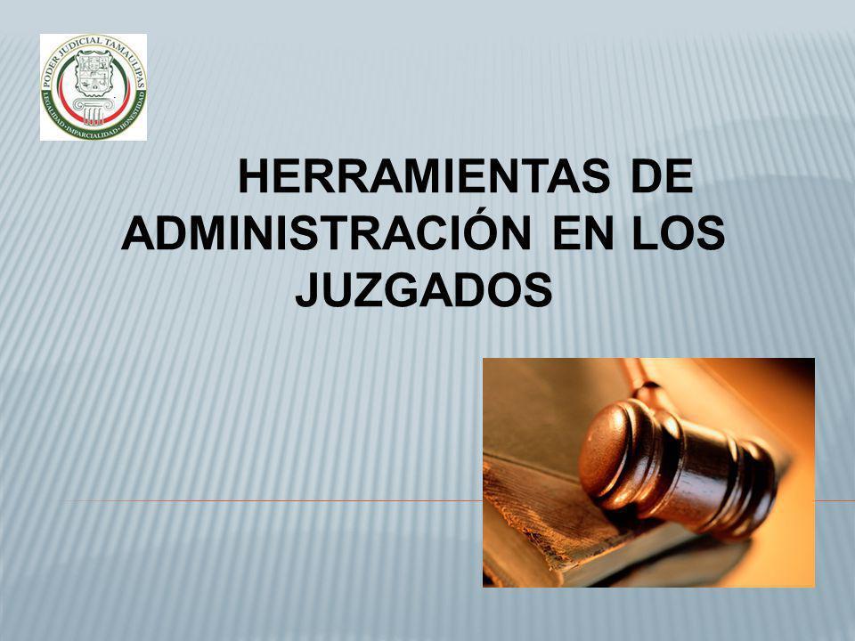 Las operaciones de control son necesarias y son correlativas al principio de delegación.