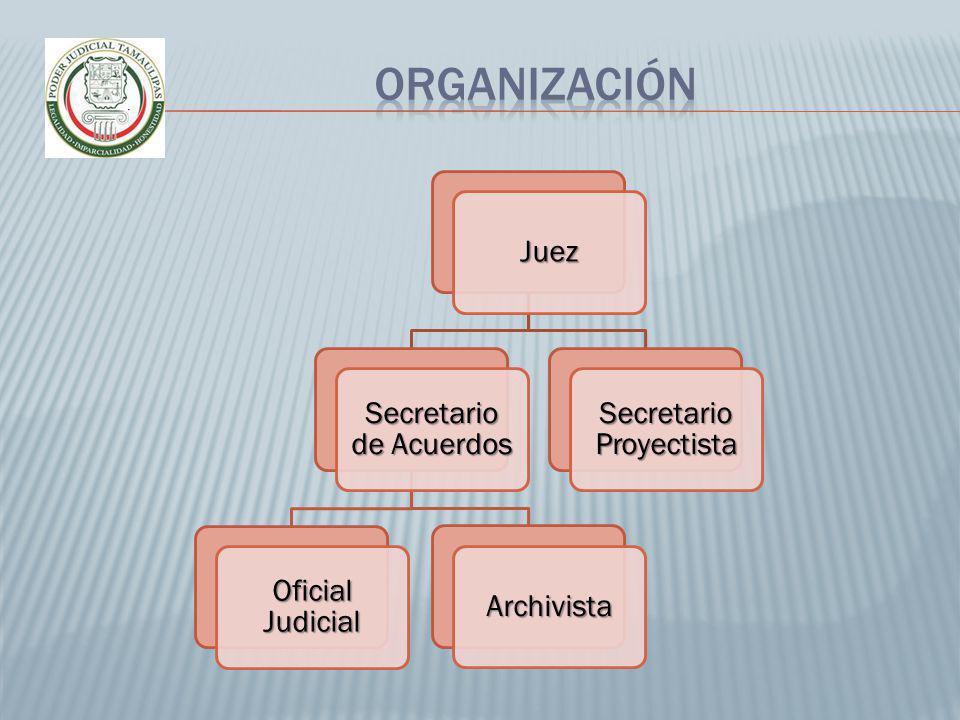 Juez Secretario de Acuerdos Oficial Judicial Archivista Secretario Proyectista