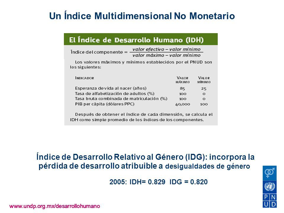 . Medición: IDH (2005)=0.8079 Índice de Desarrollo Relativo al Género (IDG): incorpora la pérdida de desarrollo atribuible a desigualdades de género 2