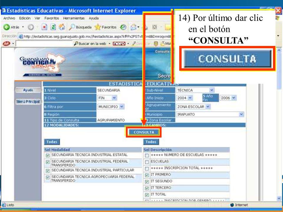 14) Por último dar clic en el botón CONSULTA