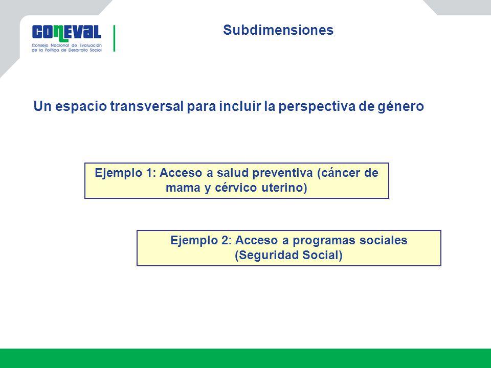 Subdimensiones Ejemplo 1: Acceso a salud preventiva (cáncer de mama y cérvico uterino) Un espacio transversal para incluir la perspectiva de género Ejemplo 2: Acceso a programas sociales (Seguridad Social)