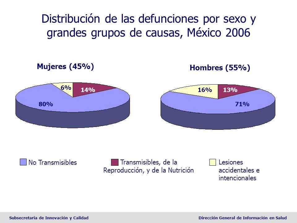 Subsecretaria de Innovación y CalidadDirección General de Información en Salud Distribución de las defunciones por sexo y grandes grupos de causas, Mé