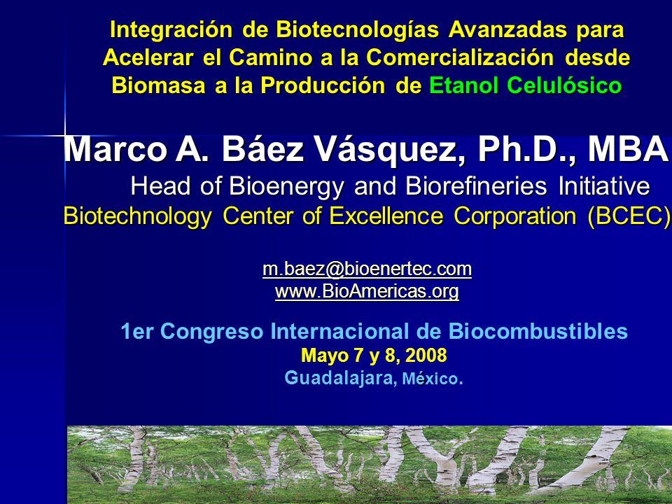 Integración de Biotecnologías Avanzadas para Acelerar el Camino a la Comercialización desde Biomasa a la Producción de Etanol Celulósico Marco A. Báez
