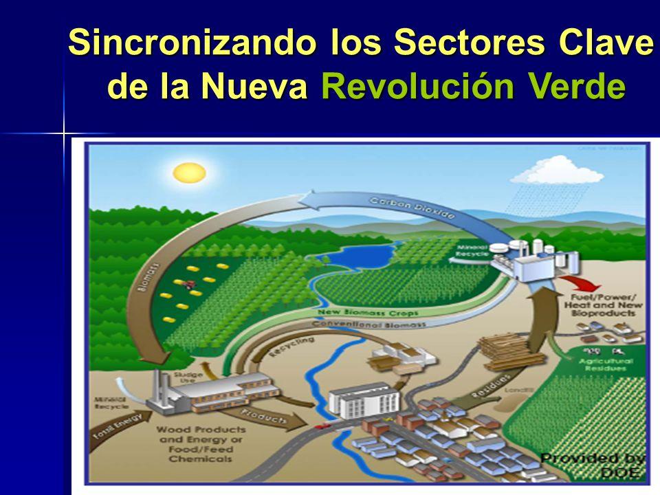 Sincronizando los Sectores Clave de la Nueva Revolución Verde