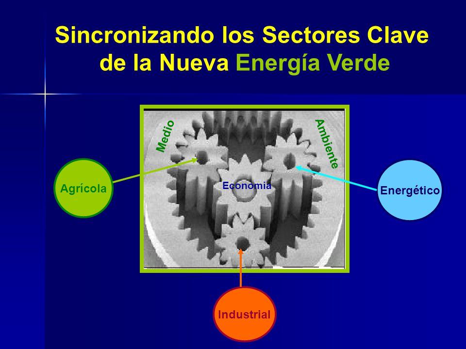 Sincronizando los Sectores Clave de la Nueva Energía Verde Energético Agrícola Industrial Economia Medio Ambiente