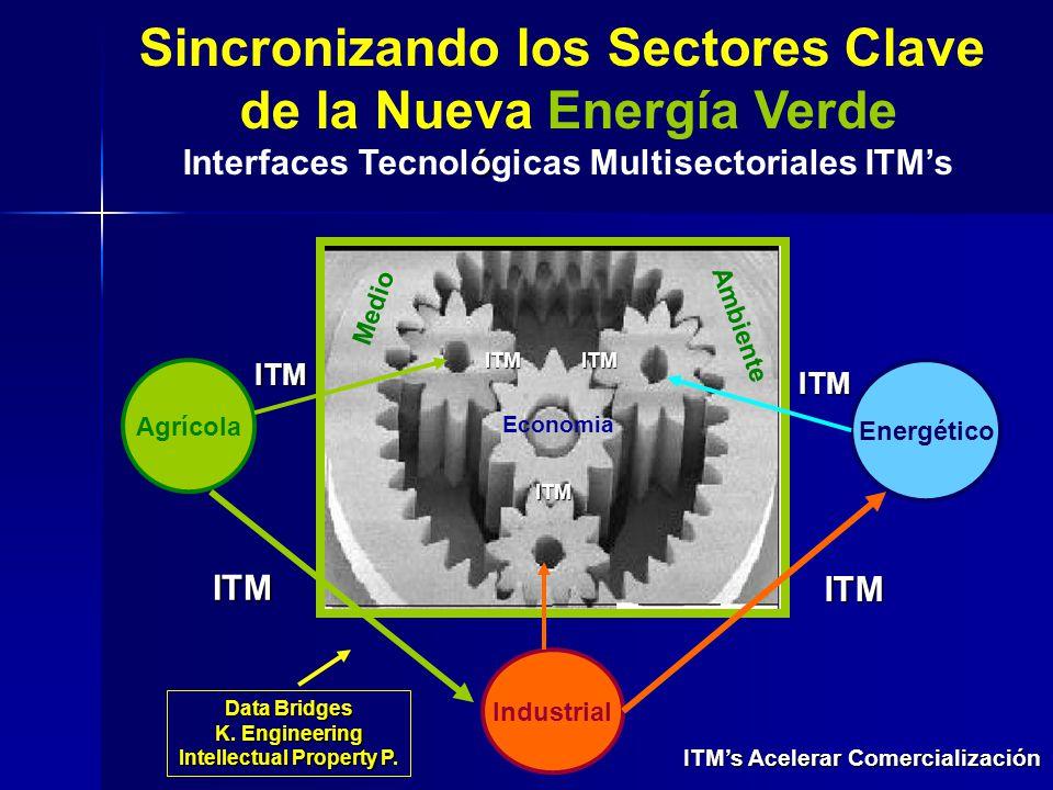 Sincronizando los Sectores Clave de la Nueva Energía Verde ó Interfaces Tecnológicas Multisectoriales ITMs Energético Agrícola Industrial Economia Med