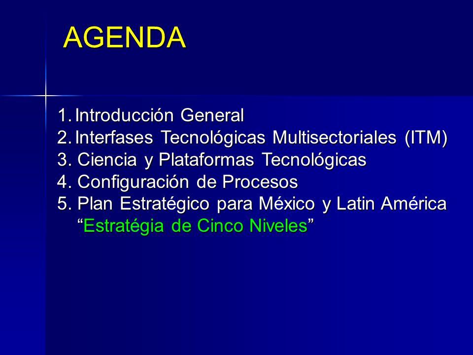 1.Introducción General 2.Interfases Tecnológicas Multisectoriales (ITM) 3. Ciencia y Plataformas Tecnológicas 4. Configuración de Procesos 5. Plan Est