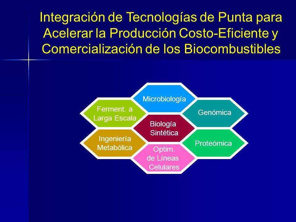 Biología Sintética Microbiología Ferment. a Larga Escala Optim. de Líneas Celulares Proteómica Ingeniería Metabólica Genómica ó Integración de Tecnolo