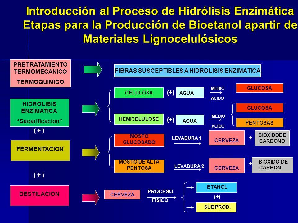 ETANOL (+) SUBPROD. GLUCOSA PENTOSAS CERVEZA + BIOXIDODE CARBONO + BIOXIDO DE CARBON LEVADURA 1 MOSTO GLUCOSADO MOSTO DE ALTA PENTOSA LEVADURA 2 MEDIO