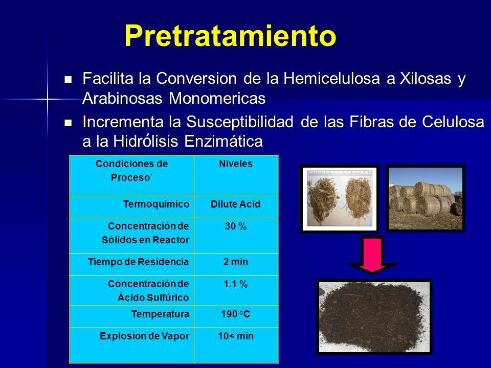 Pretratamiento Facilita la Conversion de la Hemicelulosa a Xilosas y Arabinosas Monomericas Facilita la Conversion de la Hemicelulosa a Xilosas y Arab
