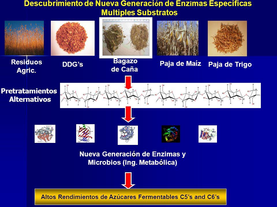 Descubrimiento de Nueva Generaci ó n de Enz i mas Especificas Multiples Substratos ó ó Nueva Generación de Enzimas y Microbios (Ing. Metabólica) Resid