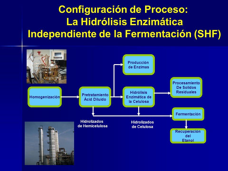 Homogenización Pretratamiento Ácid Diluido Procesamiento De Solidos Residuales Hidrólisis Enzimática de la Celulosa Producción de Enzimas Fermentación