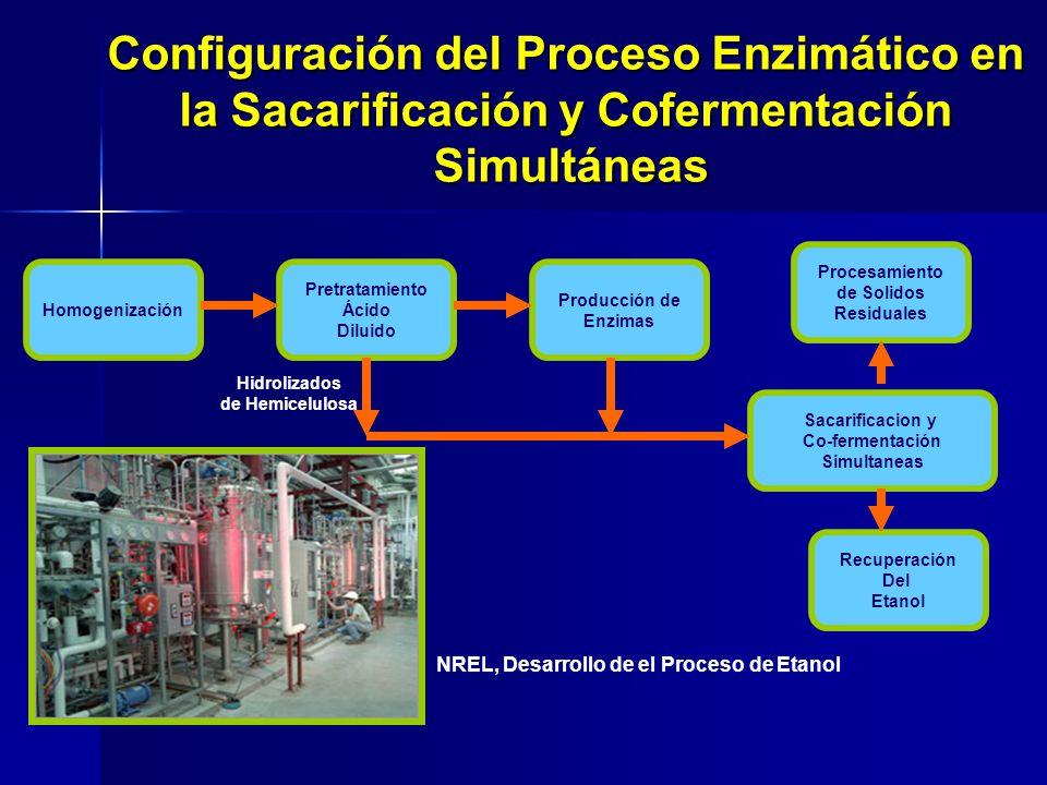 Homogenización Pretratamiento Ácido Diluido Producción de Enzimas Procesamiento de Solidos Residuales Sacarificacion y Co-fermentación Simultaneas Rec