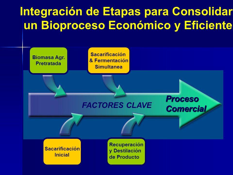 ProcesoComercial FACTORES CLAVE Sacarificación & Fermentación Simultanea Sacarificación Inicial Biomasa Agr. Pretratada Recuperación y Destilación de
