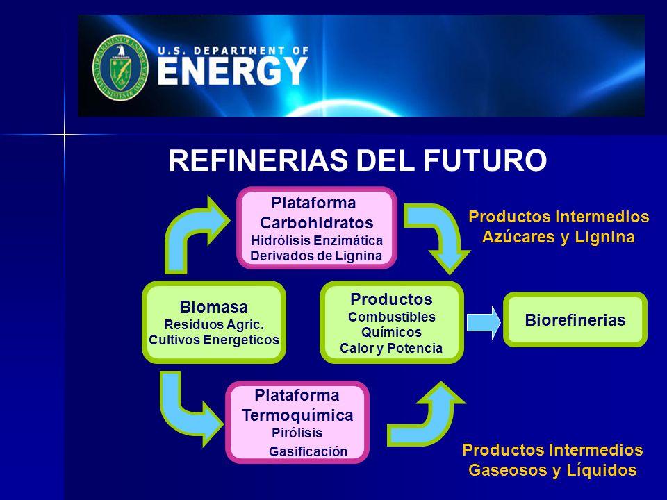 REFINERIAS DEL FUTURO Plataforma Carbohidratos Hidrólisis Enzimática Derivados de Lignina Plataforma Termoquímica Pirólisis Gasificación Productos Com