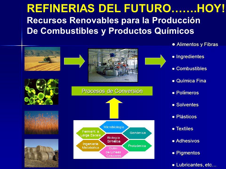 REFINERIAS DEL FUTURO…….HOY! ó Recursos Renovables para la Producción í De Combustibles y Productos Químicos Alimentos y Fibras Alimentos y Fibras Ing