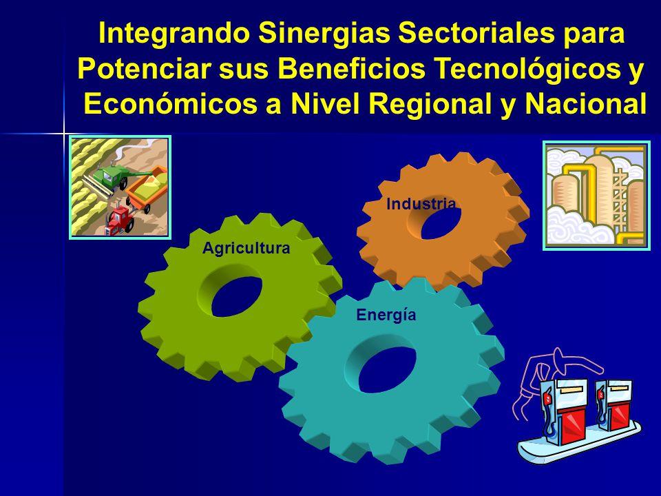 Industria Agricultura Energίa Integrando Sinergias Sectoriales para Potenciar sus Beneficios Tecnológicos y Económicos a Nivel Regional y Nacional