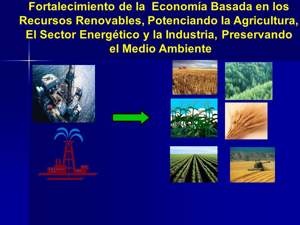 Petroleum Based Economy Biomass Based Economy Fortalecimiento de la Economía Basada en los Recursos Renovables, Potenciando la Agricultura, El Sector