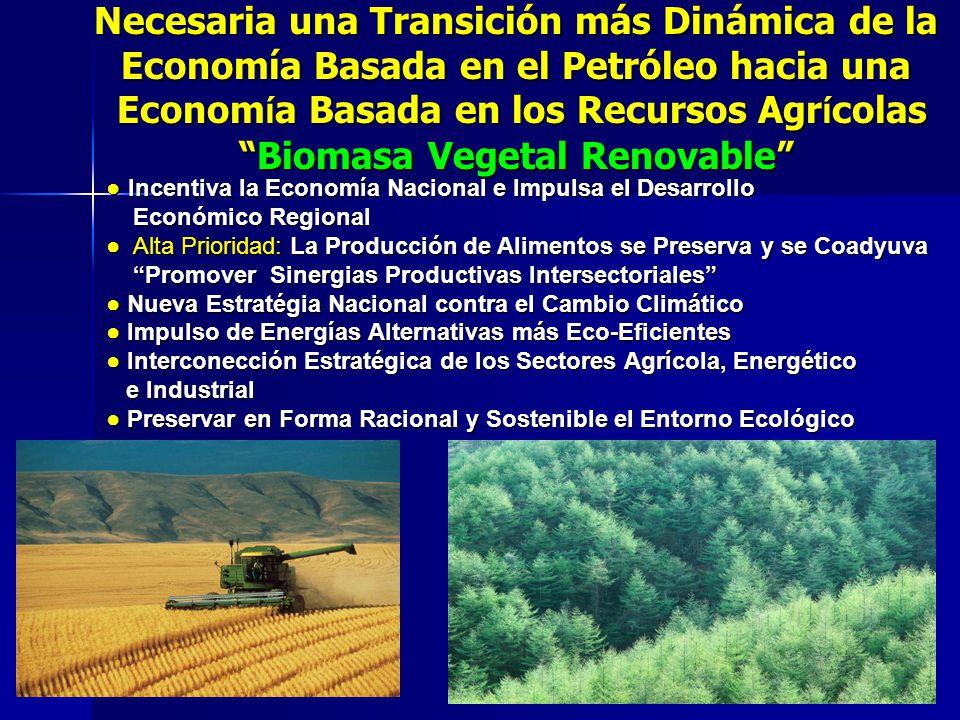 Necesaria una Transición más Dinámica de la Economía Basada en el Petróleo hacia una Econom í a Basada en los Recursos Agr í colasBiomasa Vegetal Reno