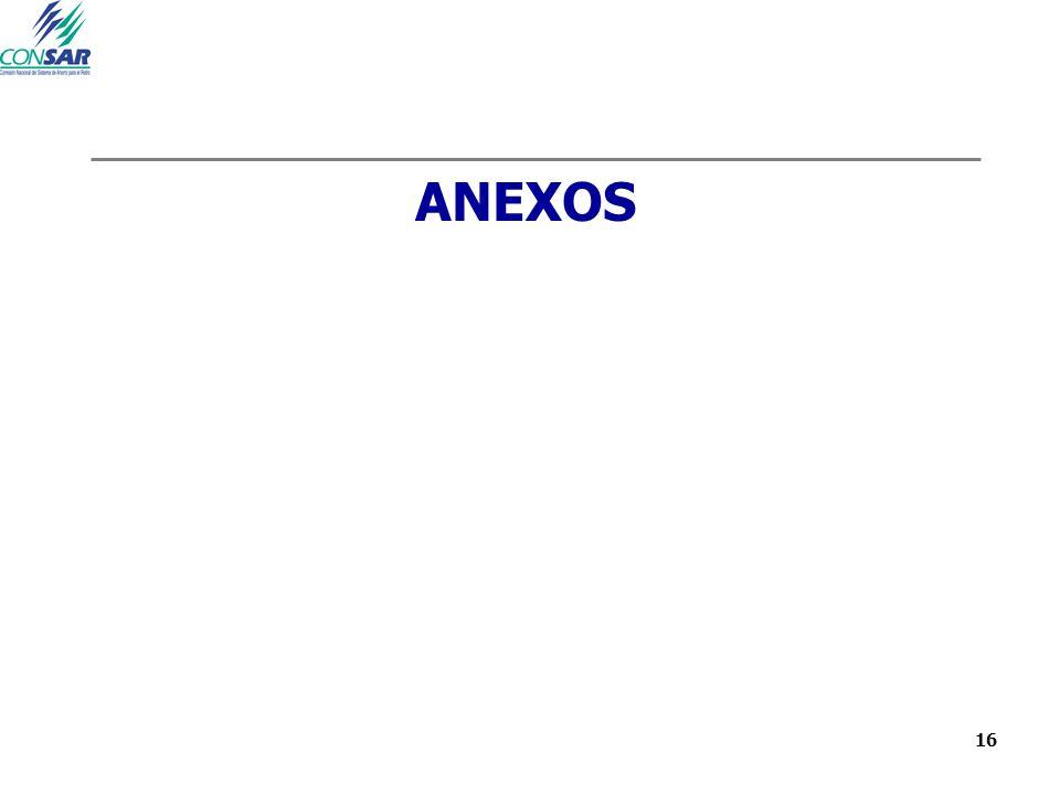 16 ANEXOS