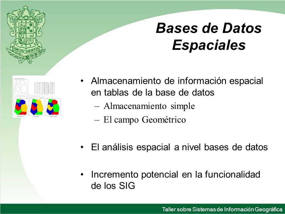 Taller sobre Sistemas de Información Geográfica Bases de Datos Espaciales Almacenamiento de información espacial en tablas de la base de datos –Almacenamiento simple –El campo Geométrico El análisis espacial a nivel bases de datos Incremento potencial en la funcionalidad de los SIG