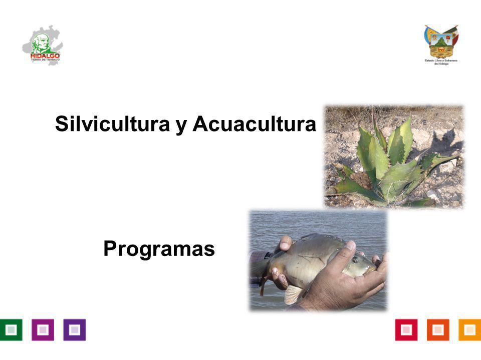 Programas Silvicultura y Acuacultura