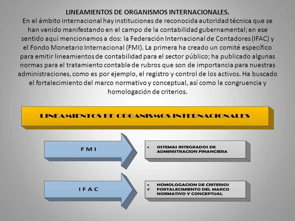 LINEAMIENTOS DE ORGANISMOS INTERNACIONALES. En el ámbito internacional hay instituciones de reconocida autoridad técnica que se han venido manifestand