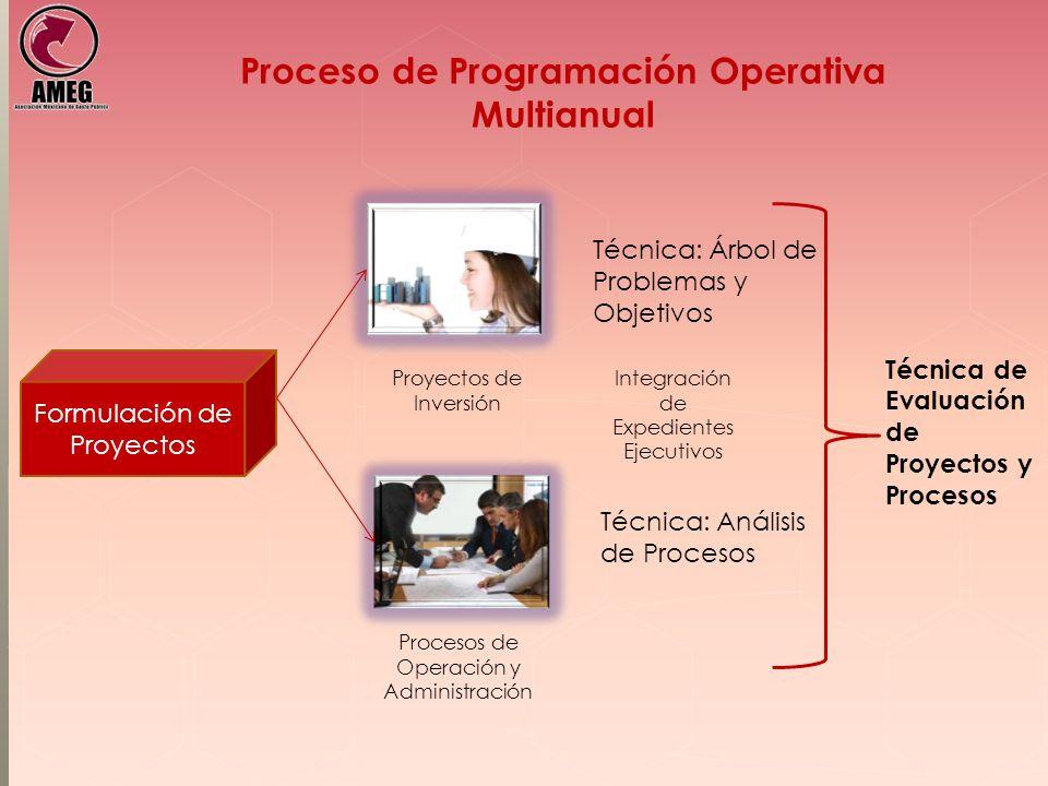 Proceso de Programación Operativa Multianual Formulación de Proyectos Técnica: Árbol de Problemas y Objetivos Técnica: Análisis de Procesos Proyectos de Inversión Procesos de Operación y Administración Técnica de Evaluación de Proyectos y Procesos Integración de Expedientes Ejecutivos