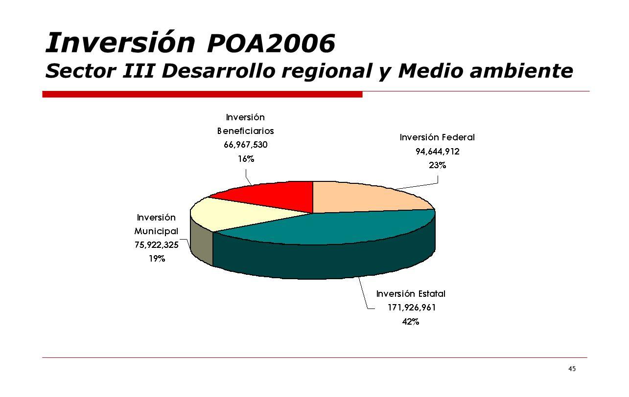 45 Inversión POA2006 Sector III Desarrollo regional y Medio ambiente