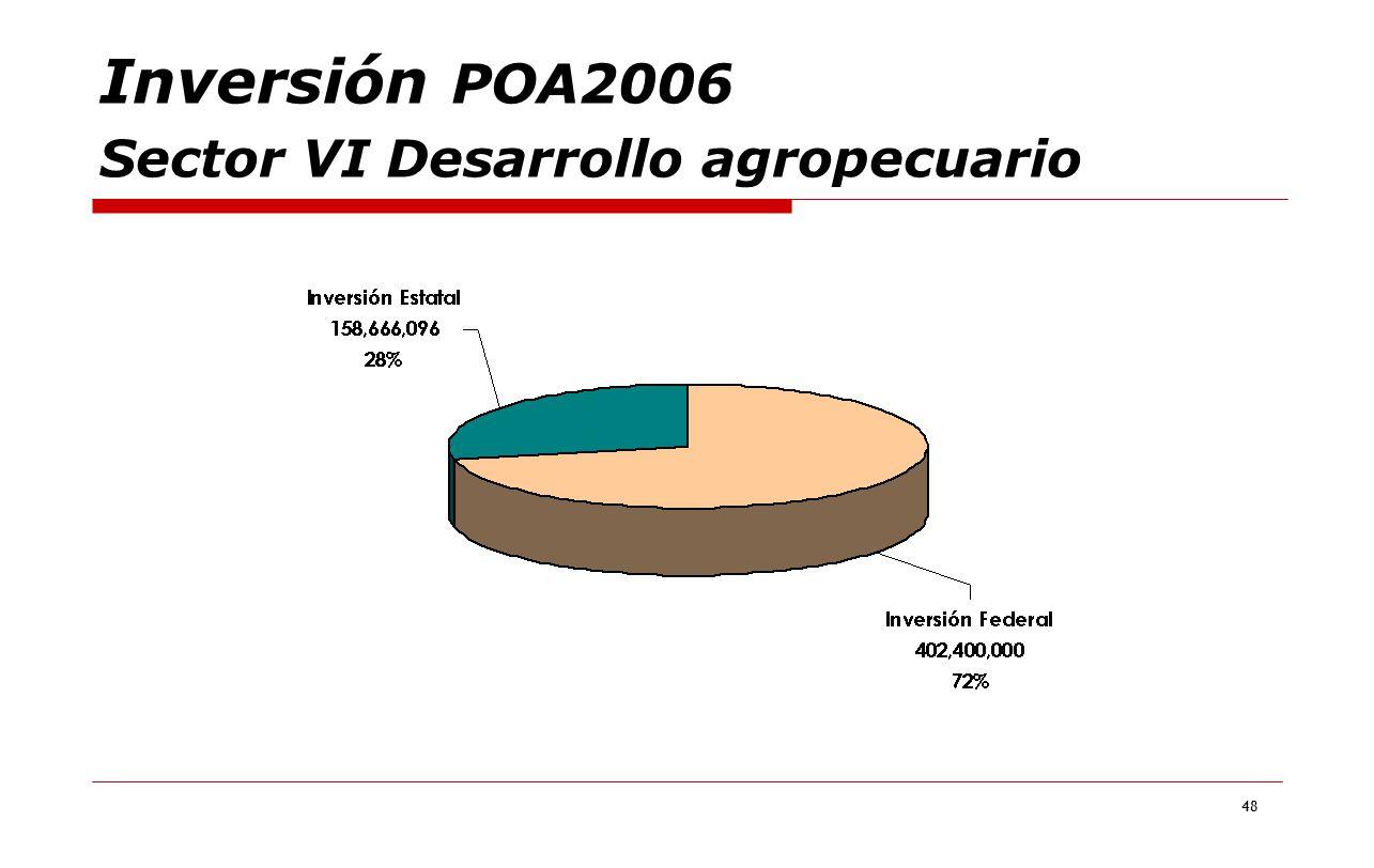 48 Inversión POA2006 Sector VI Desarrollo agropecuario