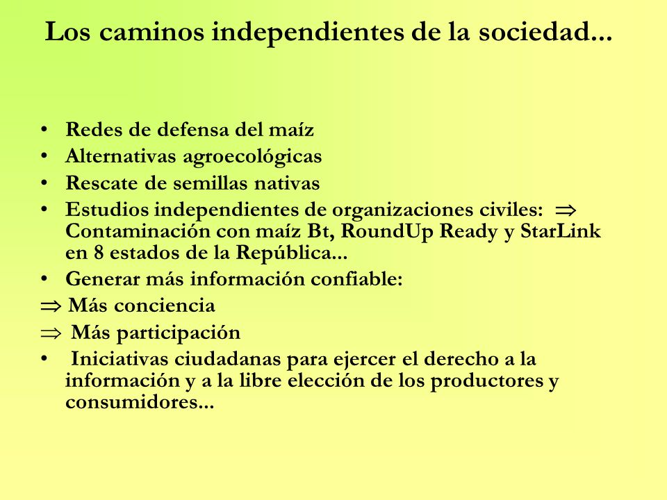Los caminos independientes de la sociedad... Redes de defensa del maíz Alternativas agroecológicas Rescate de semillas nativas Estudios independientes