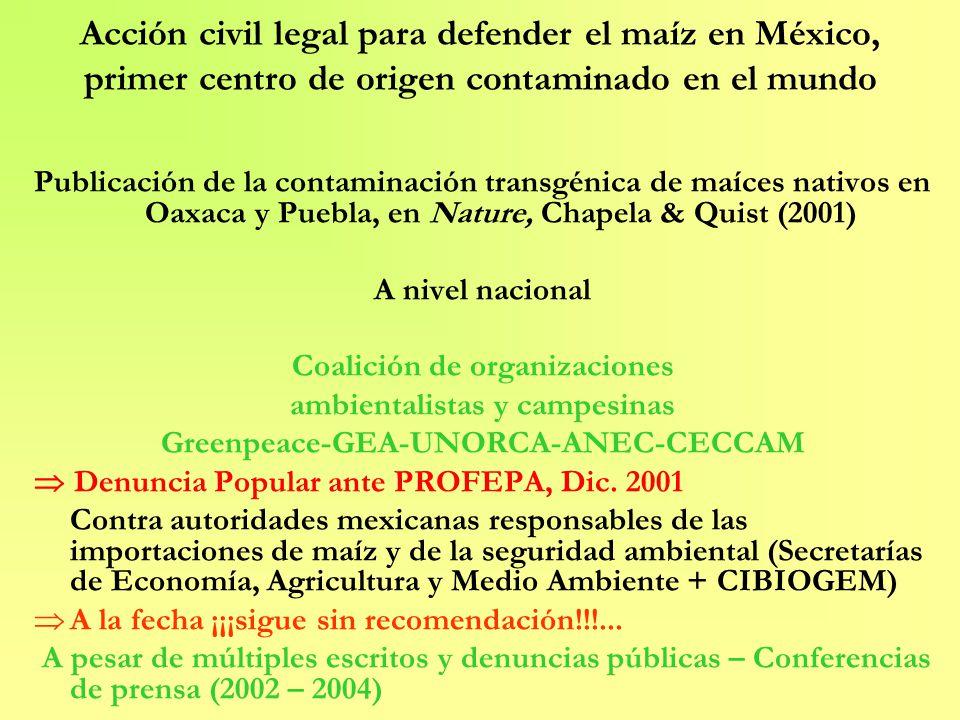 Acción civil a nivel internacional Comunidades de Oaxaca afectadas por la contaminación apoyadas por una coalición amplia de 86 organizaciones a nivel nacional e internacional Solicitud de Reporte a la CCAAN Aceptada, Julio 2002 Resultados prometidos a principios de 2004...