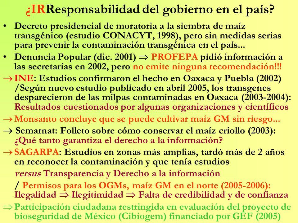 ¿IRResponsabilidad del gobierno en el país? Decreto presidencial de moratoria a la siembra de maíz transgénico (estudio CONACYT, 1998), pero sin medid