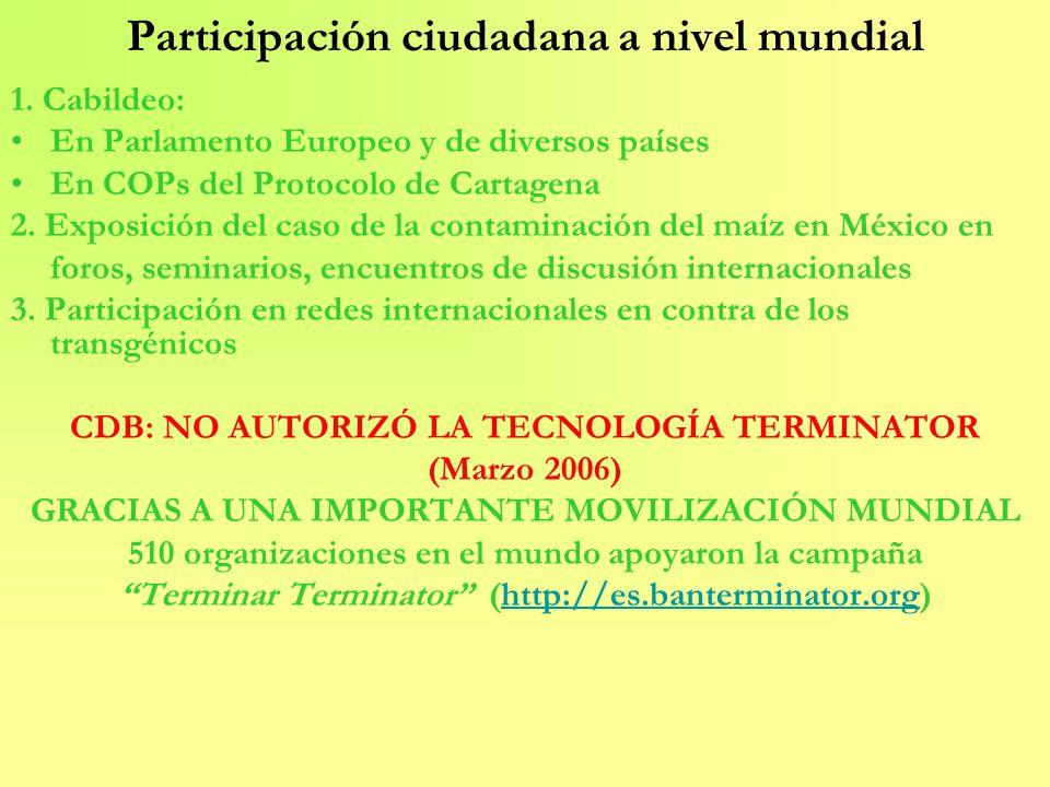 Participación ciudadana a nivel mundial 1. Cabildeo: En Parlamento Europeo y de diversos países En COPs del Protocolo de Cartagena 2. Exposición del c