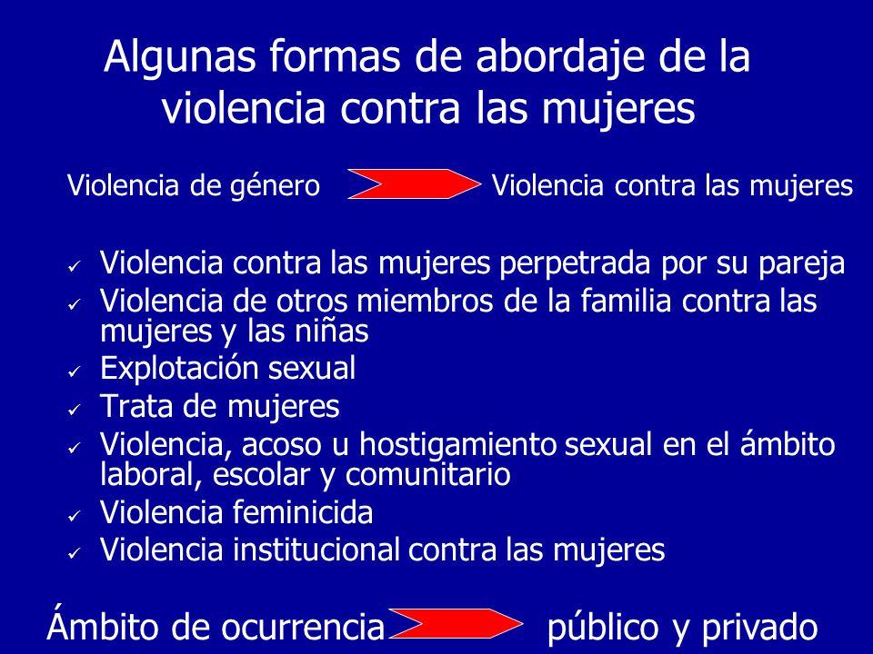 Tenemos apenas una aproximación a la descripción del fenómeno Falta medir los efectos de la violencia sobre la ampliación y el ejercicio de libertades de las mujeres, cómo interfiere en las capacidades de las mujeres Efectos de la violencia