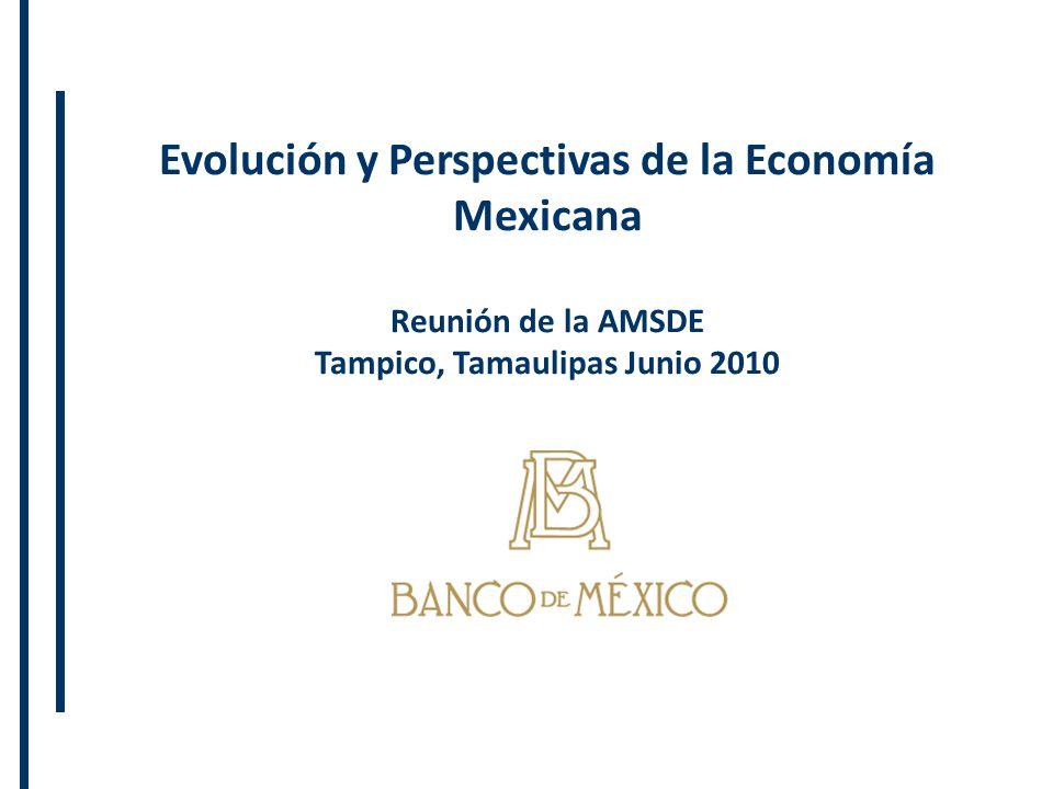 Evolución y Perspectivas de la Economía Mexicana Reunión de la AMSDE Tampico, Tamaulipas Junio 2010