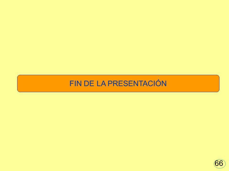 FIN DE LA PRESENTACIÓN 66