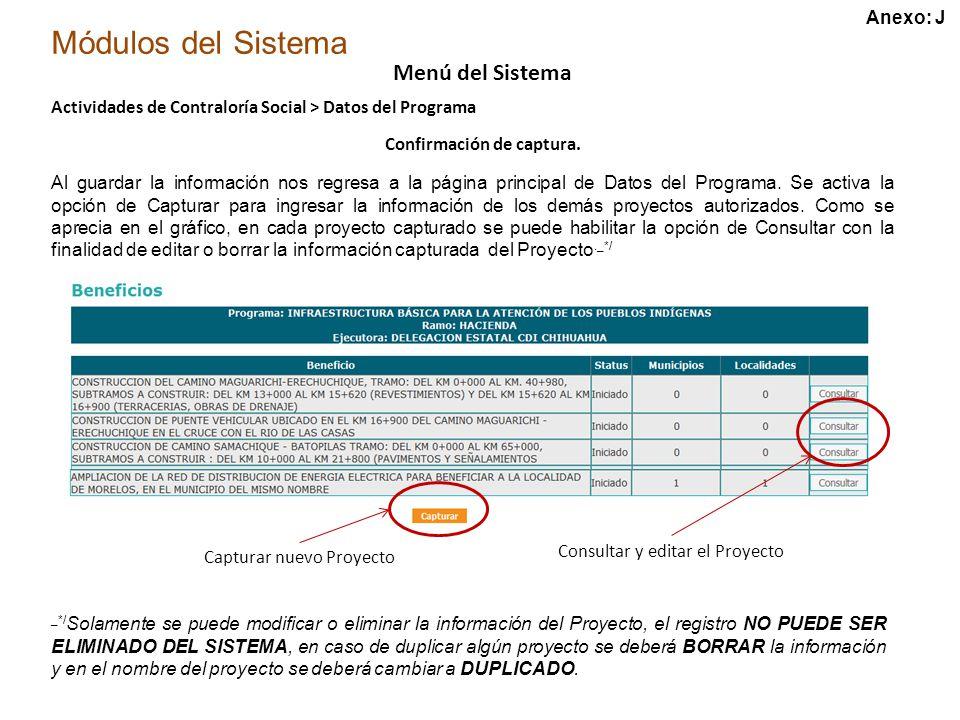Módulos del Sistema Menú del Sistema Actividades de Contraloría Social > Datos del Programa Confirmación de captura.