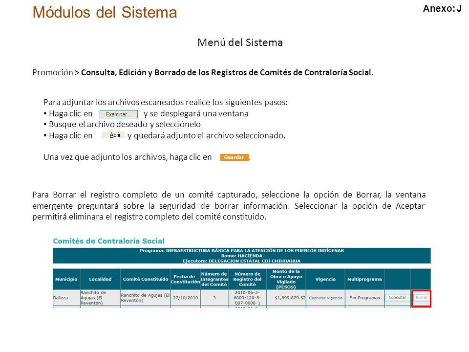 Módulos del Sistema Menú del Sistema Promoción > Consulta, Edición y Borrado de los Registros de Comités de Contraloría Social.