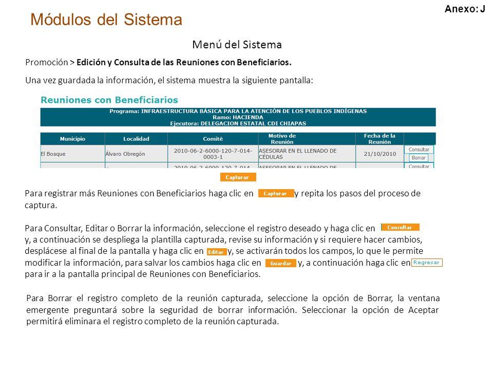 Módulos del Sistema Menú del Sistema Promoción > Edición y Consulta de las Reuniones con Beneficiarios.