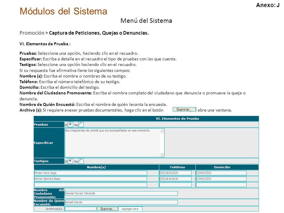 Módulos del Sistema Menú del Sistema VI.