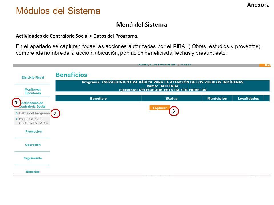 Módulos del Sistema Menú del Sistema Actividades de Contraloría Social > Datos del Programa.