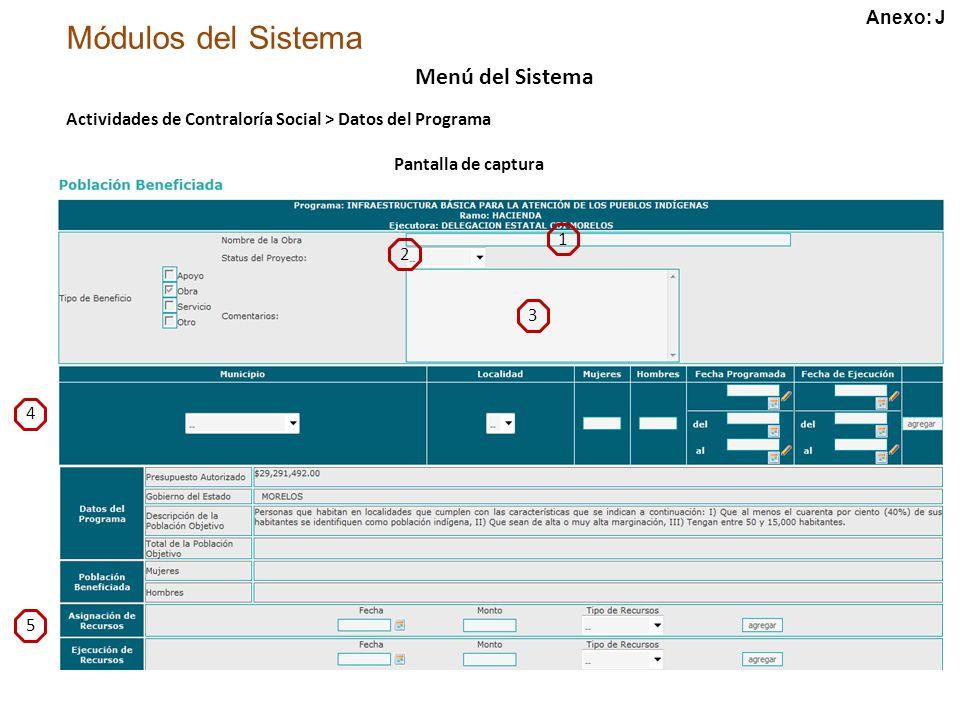Módulos del Sistema Menú del Sistema Actividades de Contraloría Social > Datos del Programa Pantalla de captura 1 2 3 4 5 Anexo: J